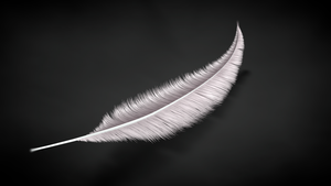 Feather by Exherion