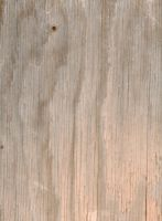 daily texture stock Wood 6 by kanderson137