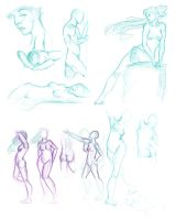 female anatomy 01 by wasiland
