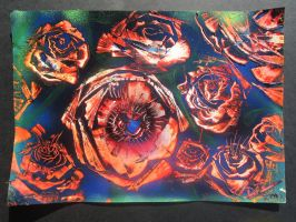 roses in rupture by darrenTyrie