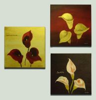 Calla lilies by Sheharzad-Arshad