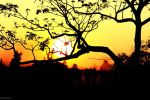BCK Sunset by Jus10Lew15