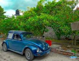 old VW beetle pseudo HDR by IvaSan