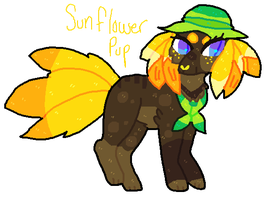sunflower pup adopt (CLOSED) by gemsoil