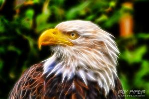 Symbol of America: Fractalius Re-Edit by nerdboy69