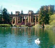 Palace of Fine Arts: The Swan by RosaLui
