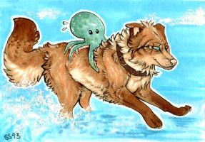 ACEO for Garss by harhailia