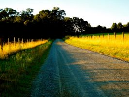 A Country Mile by Beccadinasour