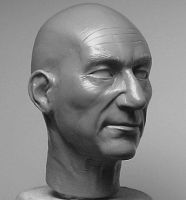 Patrick Stewart as Jean Picard by sunohc