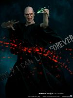 Character poster - Voldemort by agustin09