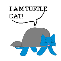 Turtle kitteh by caseVIRUS