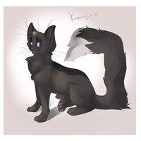 Korsha by orum-the-cat