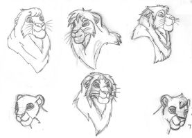 Some of the Other Lions by angeltiger777