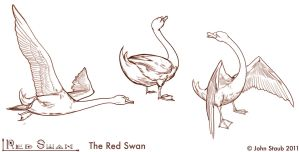 The Red Swan - Red Swan Transformed actions by dustsplat