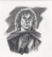 Peregrin Took by Kitt-Otter