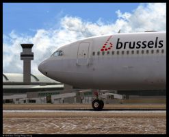 Brussels Airlines A330-300 by Nicshooter