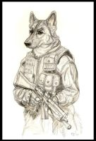 Hondo - S.W.A.T. by Foxfeather248