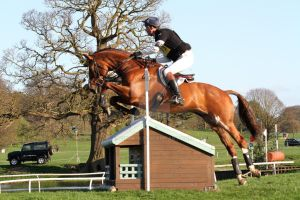 Eventing series 2014 - 25 by x-vixen-x