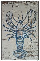 The rotting lobster by tomaplaw