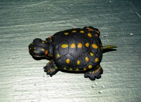 hatchling spotted turtle sculpture by LandGart