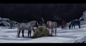 Winternights by Jullelin