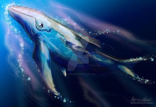 Humpback whale by Mad--Munchkin