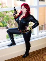 Black Widow by deeveefox