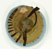 Little planet by Kcoool