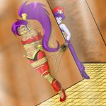 Shantae's New Master by couger49