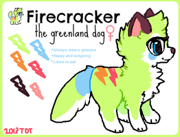 Firecracker ref sheet by foxtribe