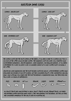 BTDC - Breed Sheet Two by Falconicide