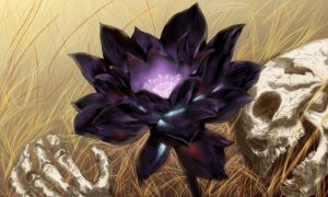 Black Lotus by Karl-Smink