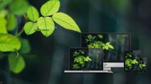 Greenish wallpaper by i5yal