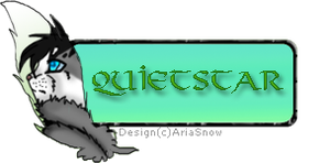 Quietstar Banner by AriaSnow