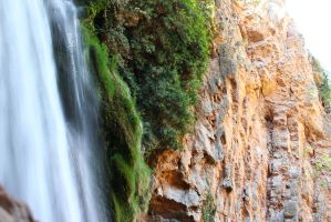 Horsetail Waterfall - Green Nature by Ali-SR