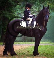 Mystical by WildFire8