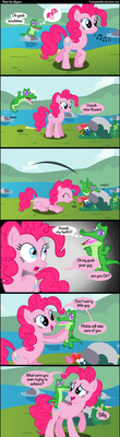 meet the alligator by Coltsteelstallion