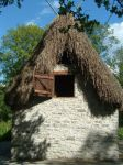Thatched Cottage by NaviStock