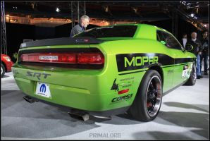 Dodge Challenger SRT Rally_2 by PrimalOrB