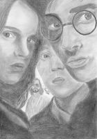 Harry, Ron and hermione by Michelles-Stuff