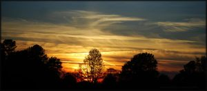 Firey-Sunset for Mary-Anne... by LadyAliceofOz