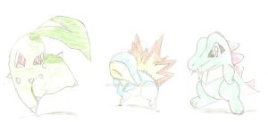 The Johto starters by I-Am-Midna