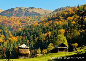 autumn in Maramures by Miha3lla
