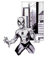 Spider-Man - Commission#1 by Ell-Shmell
