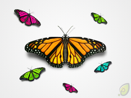 Butterfly Icon by pixtea