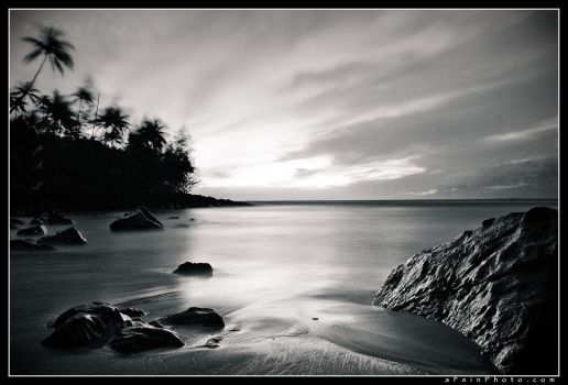Tropic Twilight by aFeinPhoto-com
