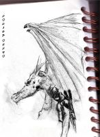 Dragon Rider by Heliux