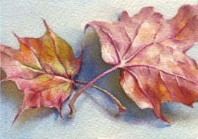 Autumn leaf-3. ACEO by OlgaSternik