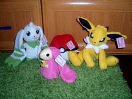Handmade plushes by WolfPink