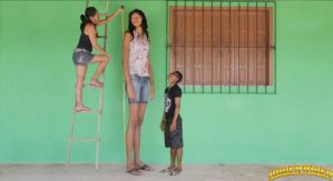 Elisany ladder measure by lowerrider